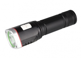 Emergency flashlight with sensor night light